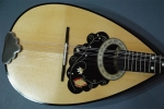 Mandolin curved
