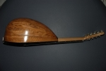 Mandolin curved 2